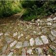 """di Beppa Rigoni Scit LA CALÀ È il """"dominus"""", anche se i primi abitatori provenienti da Valstagna (Staintal - Stain =sasso, in cimbro) già nell'anno 1000, erano stanziali e abili..."""