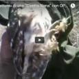 """Clicca sull'Anteprima per Guardare il Video: Significativa Ripresa Video che mostra la – Fortunosa «Cattura» – di una Bellissima """"Civetta Nana"""" da parte dell'Autore, grazie alla """"pignoleria"""" Ferrea ed Insistente..."""